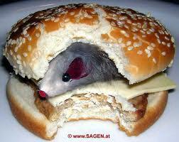 Miš u sendviču
