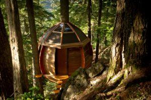 Kuća na drvetu