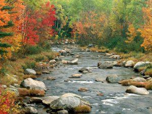 foto: lfpr.wordpress.com
