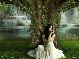 foto: wallpaperhere.com