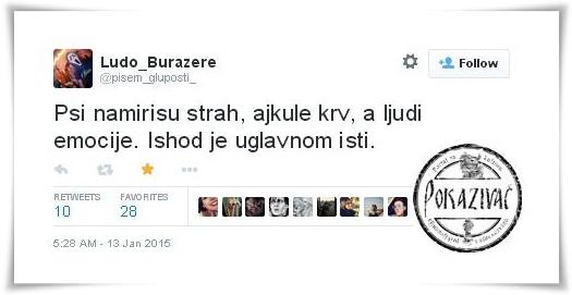 tvit3