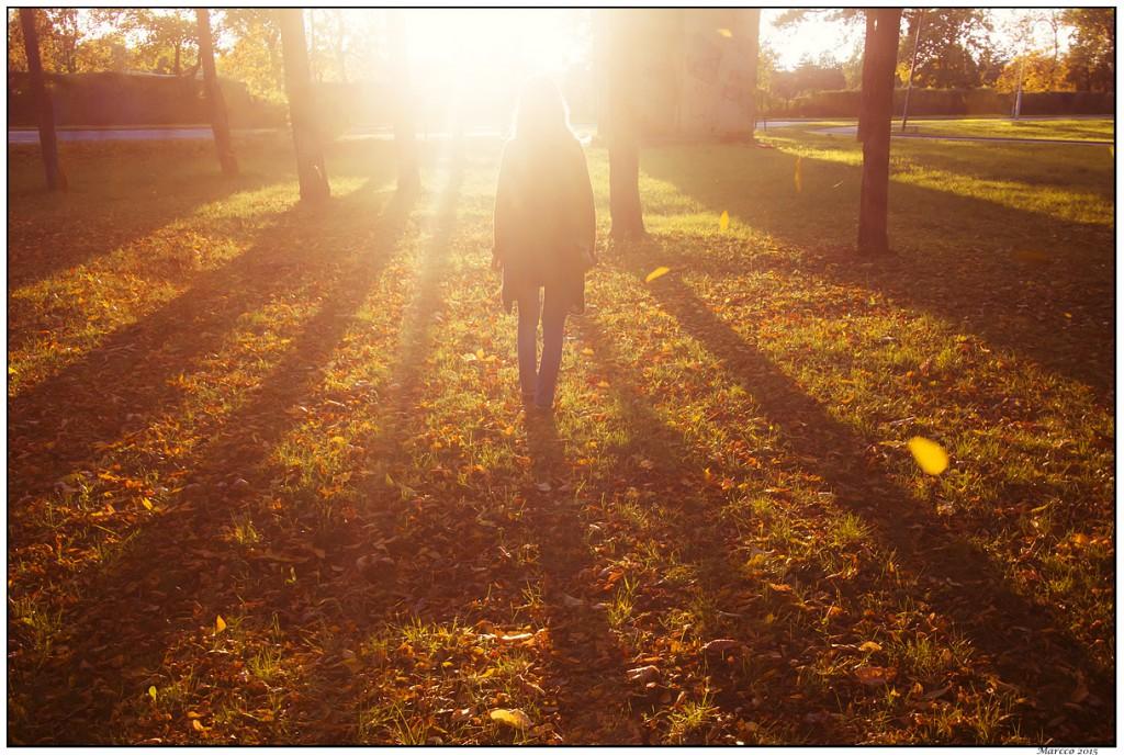 žena, senka, sunce, lišće