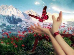 Zaspalo selo, leptir, priroda, cveće, planine, ruka, livada