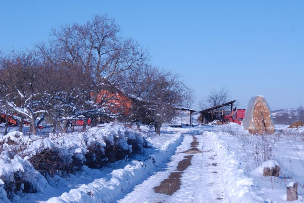 Засео Старо село