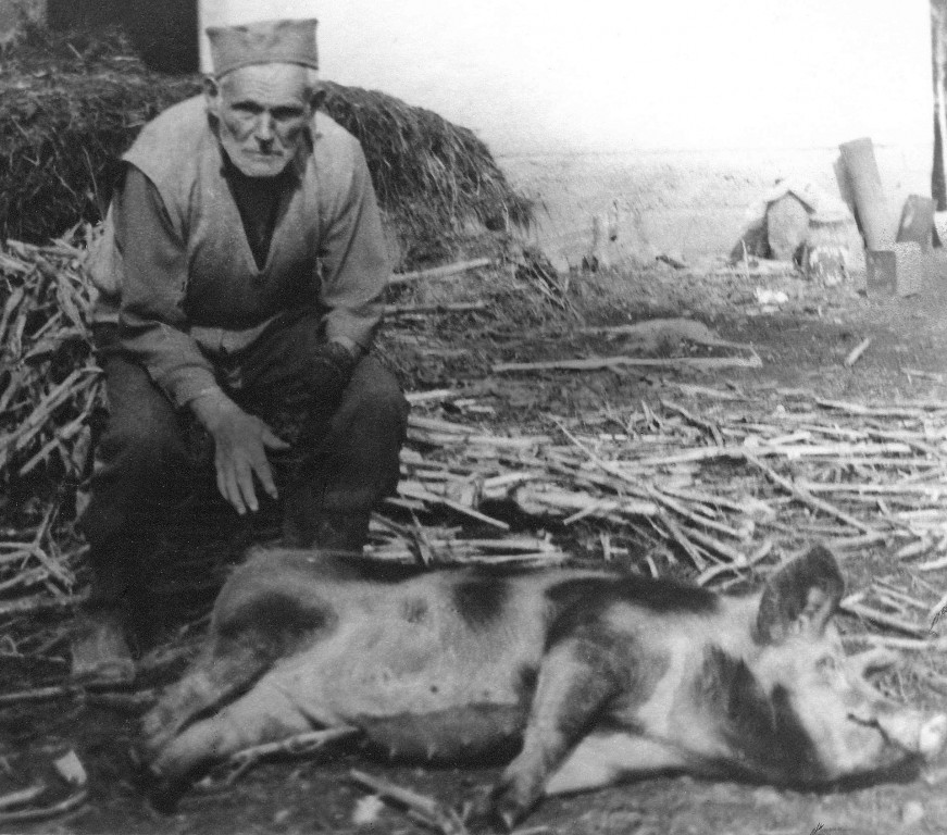 Deda Bosko-foto Milos Ignjatovic