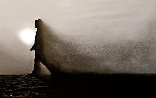 photo: http://www.ps-portal.eu/zutica/dust-in-the-wind/