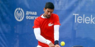 novak tennis player